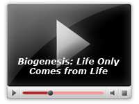 Biogenesis: Life Only Comes from Life