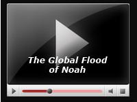 The Global Flood of Noah