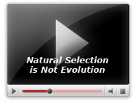 Natural Selection is Not Evolution